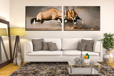 living room art, 2 piece canvas wall art, waterbuck photo canvas, animal artwork, waterbuck canvas photography