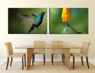2 piece group canvas, dining room large pictures, bird canvas print, wildlife canvas wall art, hummingbird canvas photography