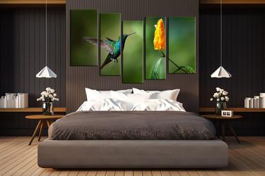 5 piece group canvas, bedroom canvas wall art, hummingbird multi panel canvas, wildlife canvas photography