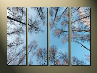 4 piece multi panel art, home decor, scenery large pictures, blue photo canvas, trees canvas photography