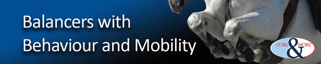 balancer-behaviour-mobility.png
