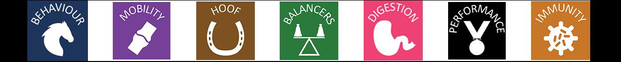 behaviour-mobility-balancer-icons.png