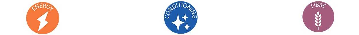 conditioning-icons.png