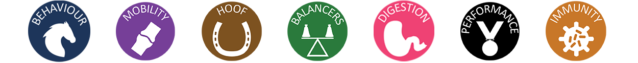 icon-buttons-with-balancer.png