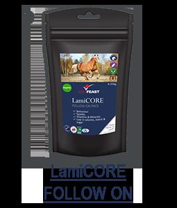 lamicore-follow.png