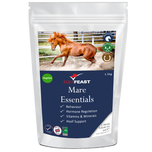 Mare Essentials FOLLOW ON Packs