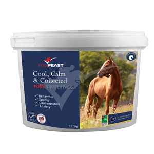 Cool, Calm & Collected Pony STARTER