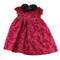 Gymboree Pretty Little Lady Party Dress M (4yrs)