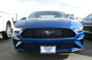 2018 2019 Ford Mustang - Removable Front License Plate Bracket SNS135