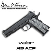 CZ 1603575: Dan Wesson Government Valor .45 ACP
