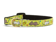 Say Cheese Cat Collar