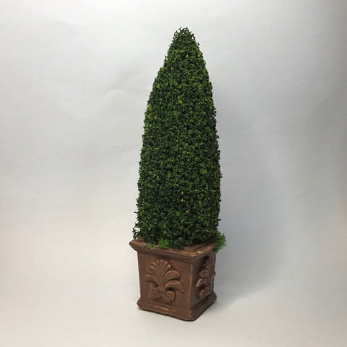 Tall fir in square base