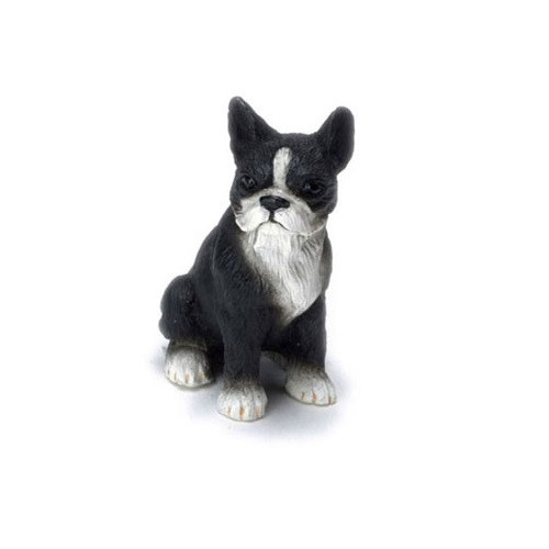 Dollhouse miniature Boston terrier