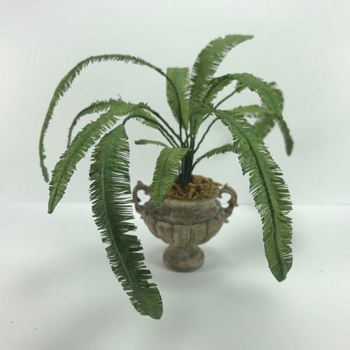 Mexican Palm Fern in Urn (SHB0002)
