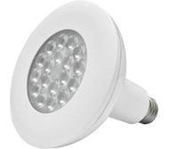 18W LED PAR38 Economic Lamp