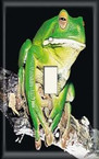 Snobby Frog - Light Switch Plate Cover
