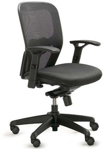 Valo Polo Ergonomic Task Chair