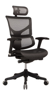 Shown with optional adjustable headrest in Black