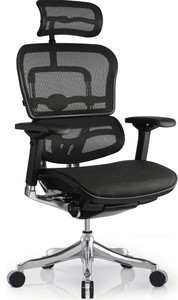EuroTech Ergo Elite Executive High Back