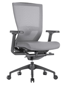 Motivate High Back Ergonomic Task