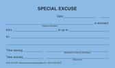 Special Excuse (27-248)