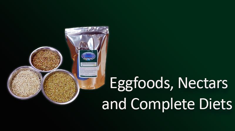 eggs-foods2.png