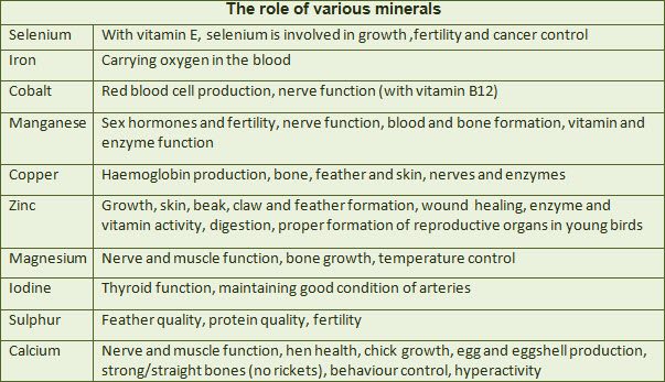 function-of-bird-minerals.jpg