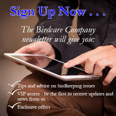 newsletter-sign-up-2020.jpg