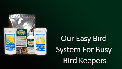 our-easy-bird-400x225.png