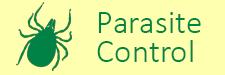 parasite-2019.png
