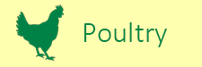 poultry-2019.png