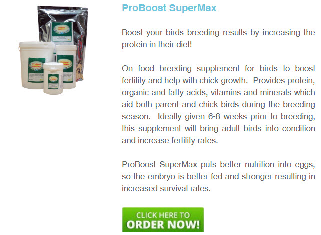 proboost-supermax-breeding-bird-supplement.jpg