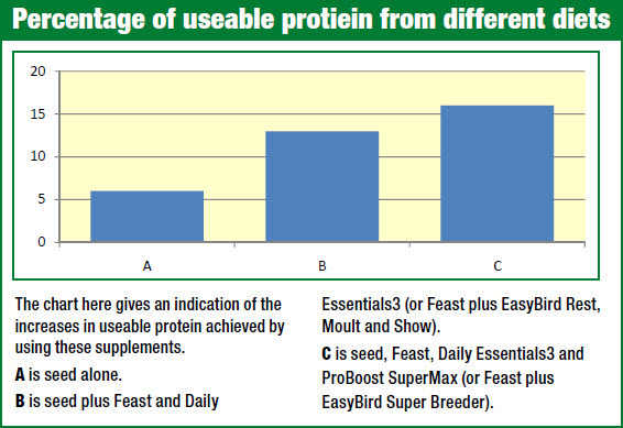 protein-in-birds-diet-chart.jpg