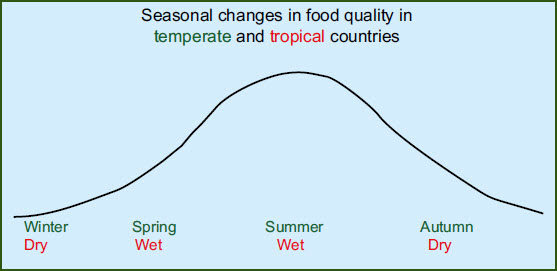 seasonal-changes-in-bird-diets-graph.jpg