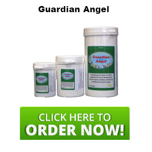 sick-bird-supplement.jpg