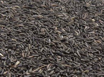 A fine, very oil rich seed.  Cleaned to 99% purity.
