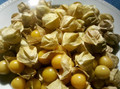 Organic Ground Cherries (bunch)