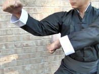 Eagle Kung Fu Uniform #545