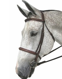 HDR Pro Mono Crown Padded Fancy Bridle