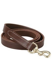 Walsh Leather Lead w/ Snap