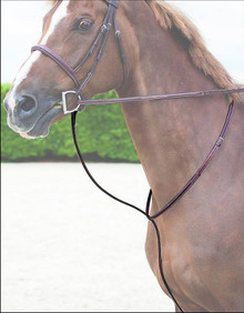 Dyon Raised Standing Martingale