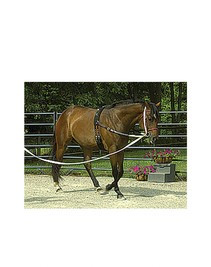 Neoprene lunging surcingle