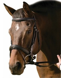 HDR Jawband Cavesson With Flash Noseband Bridle