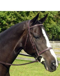 KL Select Sovereign Bridle