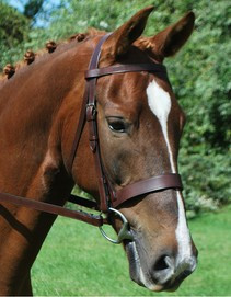 KL Select Italia Foxwell Fox Hunting Bridle