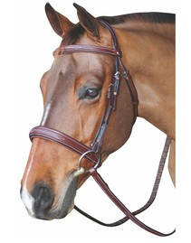 HDR Mono Crown Padded Bridle - Wide Noseband