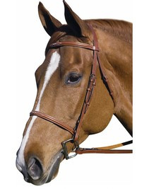 Henri de Rivel Pro Fancy Raised Bridle