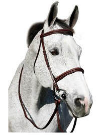 HDR Pro Plain Raised Padded Bridle - Anit Press Crown