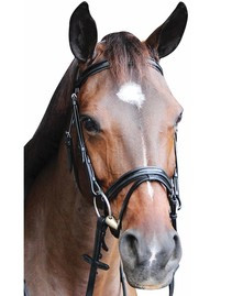 HDR Piaffe Mono Crown Dressage Bridle