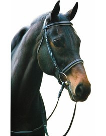 HDR Dressage Bridle
